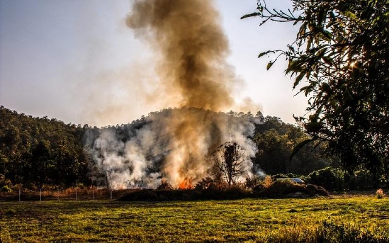 wypalanie traw i nieużytków rolnych często staje się pożarem zagrażającym życiu ludzi i zwierząt
