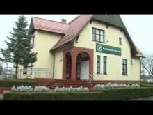 Embedded thumbnail for Żubry w okolicach Trzcianki